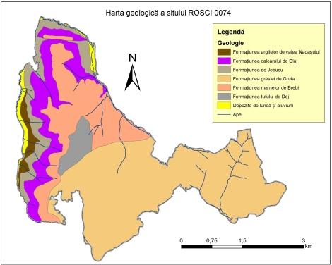 Fig4_Harta geologica_ROSCI0074